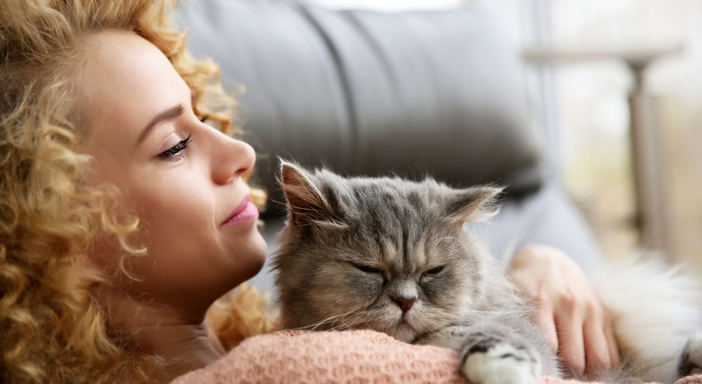 21 Ways to Make Your Cat Love You