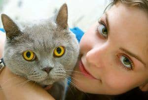 """Is your feline friend a hair biter? Here are some simple reasons that may be causing that odd """"hair raising"""" action."""