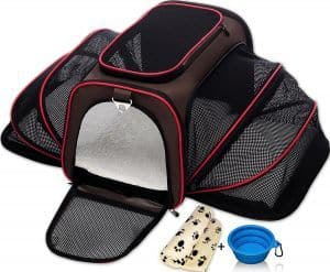 Find out how to choose the best cat carrier for your feline and our reviews of the best options on the market.