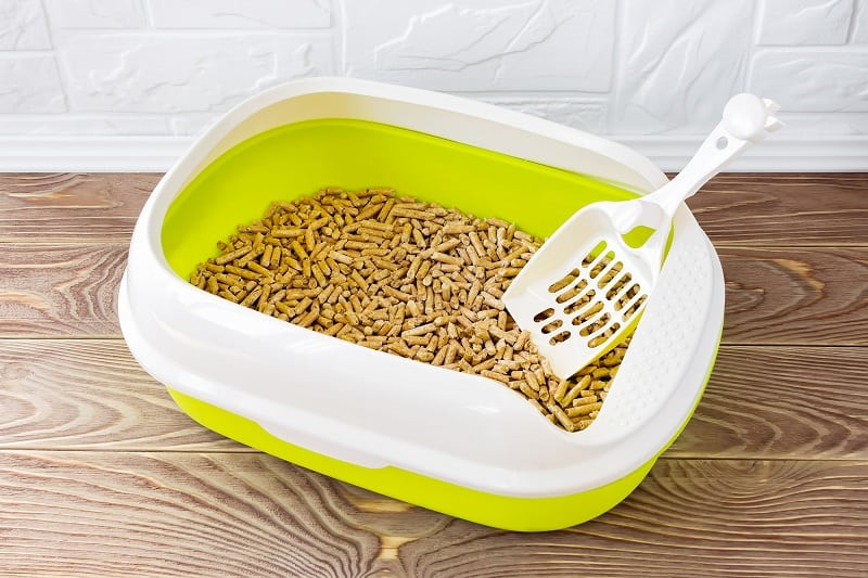 Tidy Cats Breeze Pellet Alternative