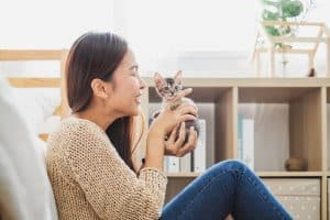 How To Raise A Kitten To Be Affectionate